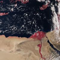 """Bí ẩn sau bức ảnh """"sông Nile đỏ máu"""""""
