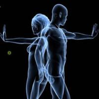 Hệ thống miễn dịch trở nên giống nhau khi chúng ta ở cùng nhau
