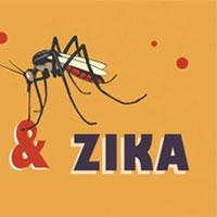 Bệnh do virus Zika và sốt xuất huyết khác nhau thế nào?