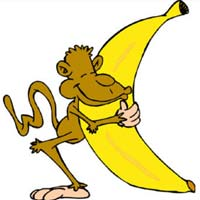 """5 chú khỉ, 1 nải chuối và câu chuyện """"vùi dập người khác"""" trong cuộc sống hiện đại"""