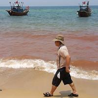Xuất hiện vệt nước đỏ 1,5km sát bờ biển Quảng Bình