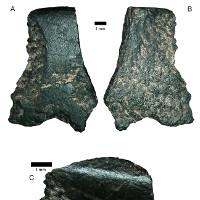 Tìm thấy chiếc rìu đá cổ nhất thế giới