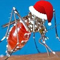 Những sự thật thú vị về loài muỗi