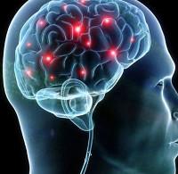 Tham vọng chế tạo não nhân tạo hoạt động nhanh hơn não người