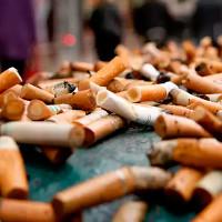 Cách giải quyết đầu lọc thuốc lá của các nhà khoa học Úc