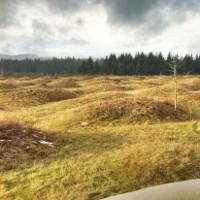 Vùng đất bỗng dưng mọc lên hàng nghìn nấm mồ khiến các nhà khoa học đau đầu