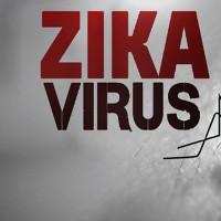 Mỹ thử thành công vắc xin phòng chống virus Zika trên động vật