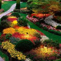 """Lặng ngắm """"vườn hoa địa đàng"""" đẹp nhất thế giới"""
