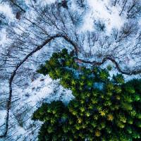Những ảnh chụp từ camera bay ấn tượng nhất