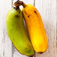Vì sao một số trái cây có tinh bột?