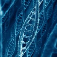 """Các nhà khoa học đang tiến gần hơn tới việc viết lại """"bộ mã cuộc sống"""""""