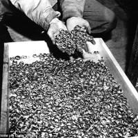 Tìm thấy đoàn tàu ma chứa kho báu cách đây 70 năm
