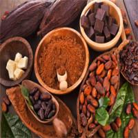Chocolate càng đắng, càng giúp da chống lão hóa