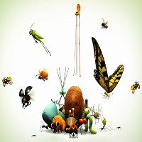 Điều gì sẽ xảy ra nếu côn trùng biến mất khỏi Trái Đất?