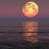 """Siêu trăng có thể tạo """"thủy triều vua"""" làm ngập vùng ven biển"""