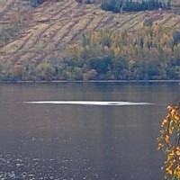 Bức ảnh cho thấy quái vật vui đùa dưới hồ Loch Ness?