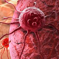 Hợp chất mới ngăn chặn sự phát triển của ung thư