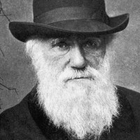 9 lý do chứng minh thuyết tiến hóa của Darwin là sai lầm