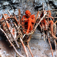 Khám phá 5 nghĩa địa ghê sợ, rùng rợn nhất trên thế giới