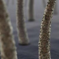 Mỹ phát triển vật liệu siêu cứng chống đạn từ tóc