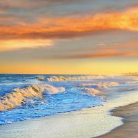 Sóng là nguyên nhân khiến 96% sinh vật tuyệt chủng ở kỷ Permi