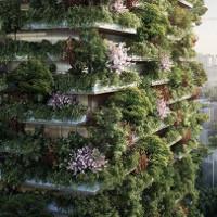 Cao ốc rừng xanh sắp mọc lên ở Trung Quốc