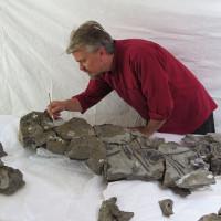 Có bằng chứng khẳng định quái thú biển thực sự từng tồn tại