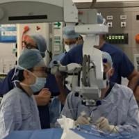 Bệnh nhân bị mù đầu tiên trên thế giới được chữa khỏi bằng cách đưa DNA vào mắt