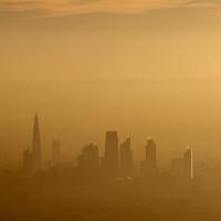 Ô nhiễm không khí nồng độ cao có thể gây teo não ở nam giới
