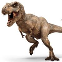 Phát hiện phôi trong trứng, khủng long được hồi sinh?