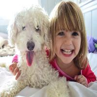 Nuôi thú có lông giúp trẻ giảm nguy cơ béo phì và dị ứng