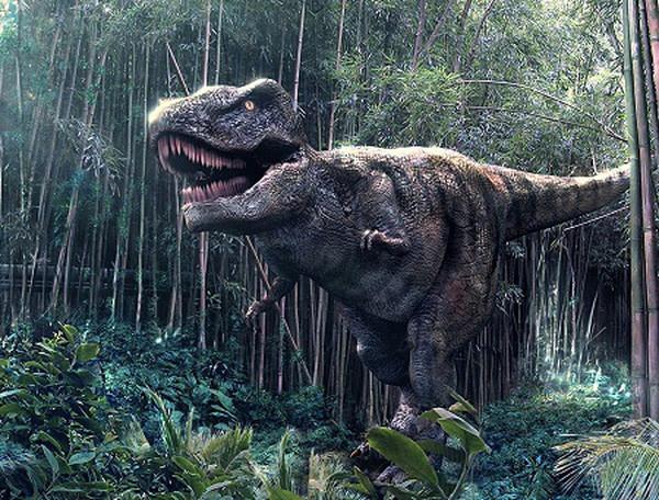 Khủng long bạo chúa T-Rex.