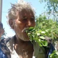 Một người Pakistan ăn lá cây để sống trong 25 năm, không bao giờ bị ốm