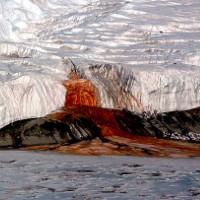 """""""Thác máu"""": Bí ẩn 106 năm ở Nam Cực vừa được khoa học giải mã"""