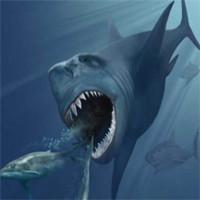 Cá mập dài 20 mét tuyệt chủng vì biến đổi khí hậu