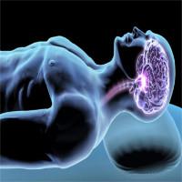 Tiến sĩ Mỹ hướng dẫn cách ngủ giúp tẩy sạch chất độc trong não