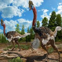 Tìm thấy hóa thạch hoàn hảo của loài khủng long giống hệt đà điểu