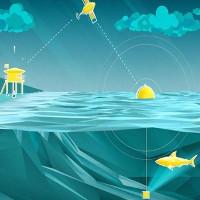 Australia sử dụng drone phát hiện cá mập để bảo vệ người dân