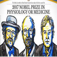 Nobel Y học 2017 cho khám phá về cơ chế kiểm soát nhịp sinh học