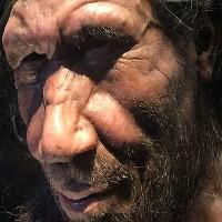 """Chúng ta """"bà con"""" với người Neanderthal đã tuyệt chủng nhiều hơn ta tưởng"""