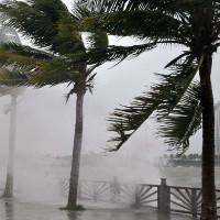 Tại sao bão ở Việt Nam lại hay vào miền Trung?