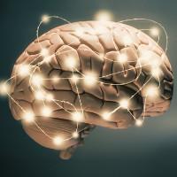 Phát hiện mới của các nhà khoa học Mỹ trong điều trị bệnh Parkinson