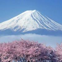 Tại sao Nhật Bản được gọi là xứ Phù Tang?