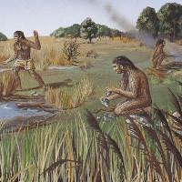 Con người biết nói từ 1,8 triệu năm trước?