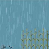 Điều gì xảy ra nếu trời mưa không ngừng?