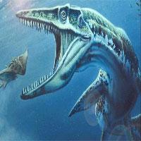 Loài thủy quái đáng sợ ở New Zealand và kết quả nghiên cứu khiến nhiều người bất ngờ