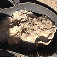 Phô mai 3.200 năm chứa vi khuẩn chết người trong cổ mộ Ai Cập