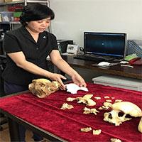 Phát hiện hóa thạch người 300.000 năm tuổi