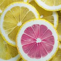 """Nghiên cứu mới: Phát hiện tế bào ung thư """"bất tử"""" nhờ vitamin C"""