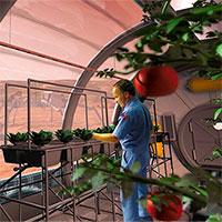 """Xây """"ốc đảo xanh"""" để trồng cây trên sao Hỏa, tại sao không?"""